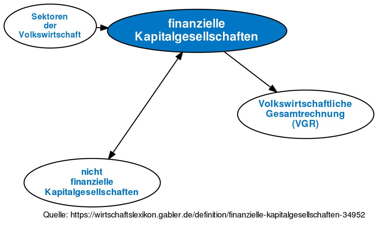 Finanzielle Kapitalgesellschaften • Definition